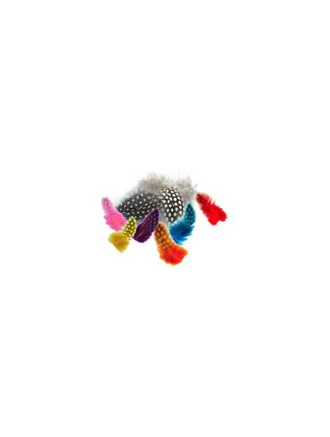 Plumas de gallina de Guinea